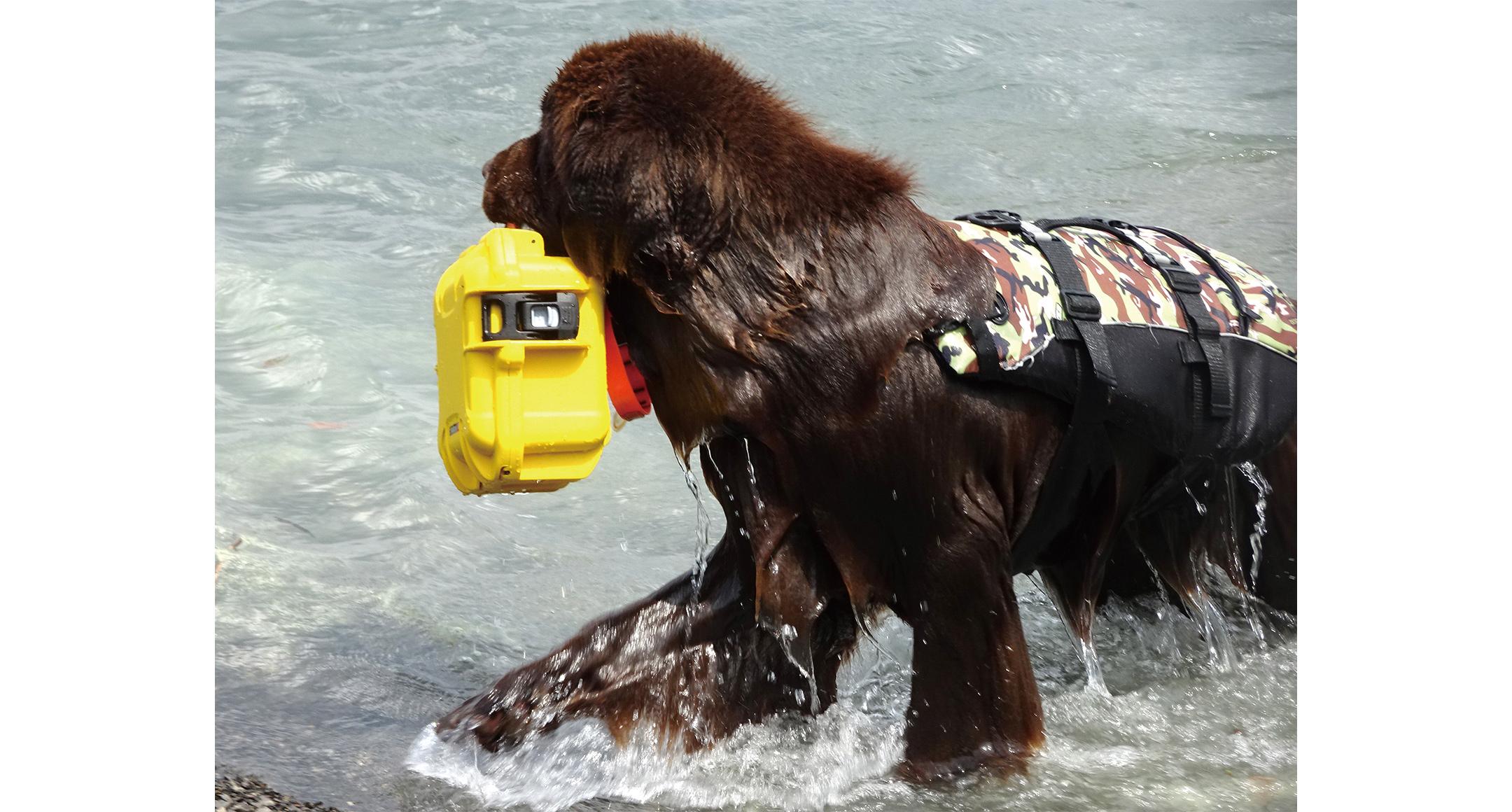 防水キャリングケース NKシリーズの画像